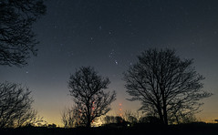 Orion between the Trees (Starman_1969) Tags: night stars orion