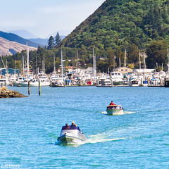 New Zealand-6409 (Ed Kruger) Tags: ocean morning travel blue sea newzealand summer sky plants sun seascape mountains reflection tree green nature water grass sunshine clouds forest landscape daylight boat fishing bush waves ship yacht wildlife horizon wave sunny vessel mount nz boating vegetation southisland kiwi fishingboat marlborough aotearoa sounds allrightsreserved havelock neuseeland admiralty yachting skyphoto nuevazelanda travelphotography nuovazelanda shipphoto newzealandphoto edkruger photoofocean photoofnewzealand abaconda qfse kirillkruger rodkruger photosofthesky