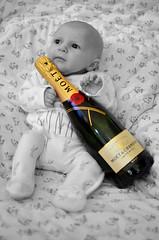 Cheers! (colour pop) (karldelahaye) Tags: portrait baby 35mm bottle nikon champagne cheers 365 moetchandon moet colourpop d5100 nikond5100 karldelahaye 522015