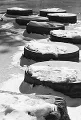 steps of faith (Light Orchard) Tags: winter bw white snow black blanco ice garden japanese noir negro eis weiss bianco blanc nero schwarz maymont bruceschneider 2015lightorchard