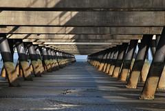 concrete force from above - (Beton)Druck von oben (Scilla sinensis) Tags: bridge concrete tide structure fromabove northsea pillars vonoben fluchtpunkt ingenieurbau fotosondag ovanifran fs150301