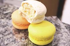IMG_0471 (Tamires Monsores) Tags: macarons comida culinria food doces
