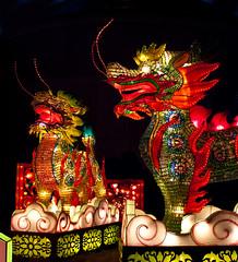 Qilin (JC Loves U) Tags: festival lights dallas december chinese dragons coloredlights lantern qilin