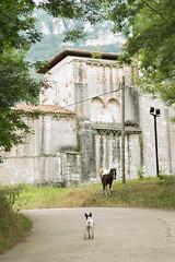 Valle de Mena (31) (cynefin_) Tags: httpcargocollectivecomcynefin valle de mena merindades burgos castilla y len villasana cynefin paisaje naturaleza siones