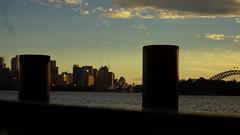 sunset on the dock (Blue Mtns. bush girl) Tags: sunset zoo sydney australia sydneyharbour taronga