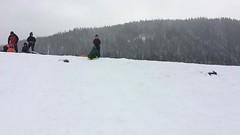 sledding at white river (dolanh) Tags: winter snow lucas renee whiteriver sledding snopark mthoodwilderness whiteriversnopark