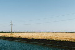 DSC_0203 (Frostroomhead) Tags: sky art water field yellow nikon f14 sigma wires 30mm d5200