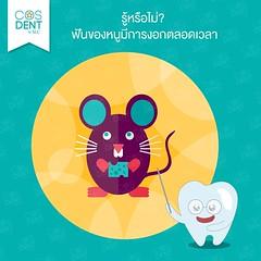 2015-0138   #cosdentbyslc #makeoveryoursmile #slcgroup (Dental clinic in Bangkok) Tags:             cosdentbyslc dental clinic bangkok