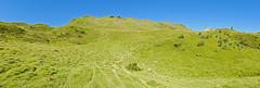 Panoramique du secteur (alainlecroquant) Tags: anima fort pyrnes montagnes panoramique carrire chardon brebis pyrnesatlantiques troupeau 18135 doline minral abreuvoir vidos valledossau cheminforestier carn coldaran rocherdaran plateaudubnou twonav ourlne fujixt1 ourlenotte abreuvoirdelaste fontainesdecongles passagevertigineux