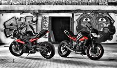 (Brice675) Tags: triumph moto motorbike ducati aprilia yamaha honda kawasali suzuki daytona street triple streettriple