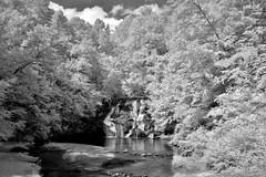 Cane Creek Falls IR B&W (Neal3K) Tags: trees bw clouds creek ir blackwhite waterfall infraredcamera campglisson kolarivisionmodifiedcamera