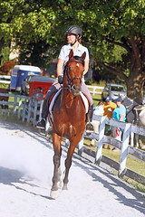 IMG_2533 (SJH Foto) Tags: horse show rider action shot dressage wtc walk trot canter teens teenagers girls