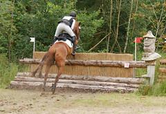 P1270550 (serita.vossen) Tags: horse horses eventing cross jumping paarden emmeloord ruiters amazones