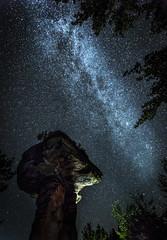 Teufelstisch (Sijie Shen) Tags: europe germany rheinlandpfalz hinterweidenthal teufelstisch devils table landscape nightscape stars milkyway astrophotography sky clear trees nature rocks