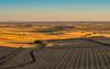 Castilla cuando la ves. (Jesus_l) Tags: europa españa valladolid tiedra camposdecastilla jesúsl