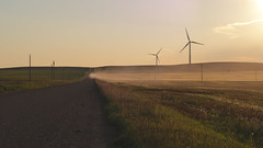 a dusty road near Three Hills (Alanpaone) Tags: alberta canada landscape sunset centralalberta dirtroad dust explorealberta threehills wheat windfarm windpower windmills