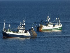 Solstice - Moray Endeavour (allyB803) Tags: morayfirth fishingboat squidfishing