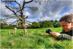 Focussed! ... (Alan Burkwood) Tags: clumberpark alanp parasol macrolrpiotaprocera fungi photographer