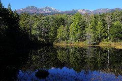 Reflections on the water (Teruhide Tomori) Tags: light autumn nature landscape japan nagano norikura mtnorikura       water reflection tree clouds chbusangakunationalpark  forest ushitomepond