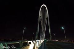 Dallas Margaret Hunt Hill Bridge (ruijuanwang2) Tags: dallas cityskyline skyline lights building bridge