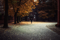 tiny dancer (ewitsoe) Tags: autumn fall agnieszka woman leaves church cathedral october sunday city nikon d80 35mm street ewitsoe halloween yellowleaves falling trees poland poznan