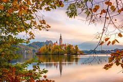 Slovenian Autumn View (pieter.struiksma) Tags: autumn slovenia colors trees sunrise water morning lake sky church reflections island bled leaves