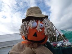 Pumpkin Festival and Scarecrow Avenue 2016 (Dixi World) Tags: pumpkin festival scarecrow avenue 2016 southampton ukulele jam suj live concert victoria park royal queen