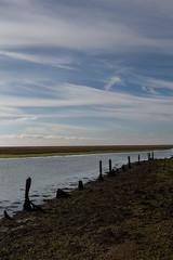 Autumn sky (KevPBur) Tags: canon650d canonkissx6i canonrebelt4i canonefs18135mmf3556isstm cirrostratus cirrus hurstcastle keyhaven clouds cloudscape coastline lowtide posts sea sky canon650dcanonkissx6icanonrebelt4i