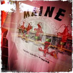 MAINE-287