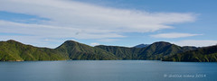 Leaving Picton, Queen Charlotte Sound (flyingkiwigirl) Tags: ferry bay charlotte cook queen sound c
