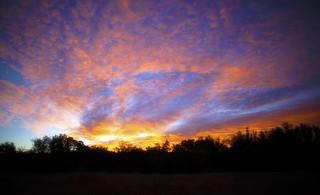 Sonoma sunrise (Explored)