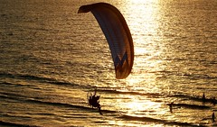Powered paragliding at the golden hour - Tel-Aviv beach (Lior. L) Tags: travel winter light sea reflection beach weather silhouette canon reflections golden israel telaviv mediterranean action silhouettes hour paragliding canondslr goldenhour mediterraneansea shimmering shimmer actionshot powered canon70200f4l goldenlight actionphotography greatweather winterinisrael goldensea poweredparagliding canon600d travelinisrael canont3i canonkiss5 poweredparaglidingatthegoldenhourtelavivbeach