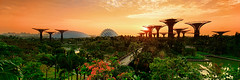 Green Mars (Sunrider007) Tags: panorama mars plants water gardens by sunrise canon river landscape bay singapore stream sony vegetation tse a7r