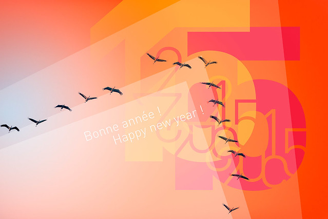 Bonne année photos à tous ! Happy New Year to all photographic