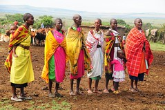 Maasai Ladies Choir. (john a d willis) Tags: kenya mara maasai maasaimara manyatta welcomesong saariysqualitypictures