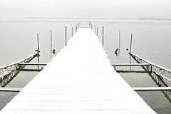 White Dock (giantmike) Tags: winter lake snow cold water frozen dock empty ducks mendota canonef50mmf14usm