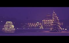 X-mas (fr4dd) Tags: christmas xmas winter light snow tree night germany lights wiesbaden christmastree xmastree