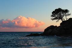 Cala Treumal (Albert T M) Tags: sunset atardecer árboles catalonia arbres nubes catalunya nuages ocaso costabrava cala platja blanes lloretdemar núvols postadesol laselva catalogne mediterrani capvespre ocàs