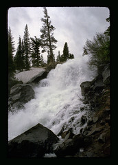 east of lake mary (rappensuncle) Tags: trees snow mountains film nature water rock vertical 35mm waterfall moving spring stream minolta action fast mammoth remote melt flowing sierranevada thaw splashing lakemary rappensuncle