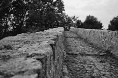 Vieux pont en pierre (mathieu_veron) Tags: nikon pierre pont aude corbires d3200