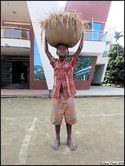 Boy Holding Basket of Rice Stalks @ Khan Bari (dark-dawud) Tags: life boy house nature reflections asia child basket estate rice native culture sylhet bangladesh asianboy luckyboy wayoflife ricecrop nabiganj sylhetregion khanbari khalaborpur