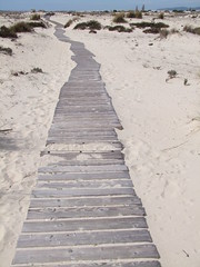 Deserted (cyclingshepherd) Tags: 2015 cyclingshepherd march portugal algarve olhão armona ilha beach island sand boards boardwalk path trail empty faro pathscaminhos caminho senteiro s100fs pib algarvepitoresco