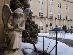 DSC00327 (Province of Saint Joseph) Tags: winter snow cold ice angel frozen dc washington freezing dhs