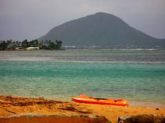 If I Can Turn Back Time_70 (Jimmy - Home now) Tags: daddy happy hawaii dad waikiki oahu happiness maui honolulu hilo waikikibeach kona