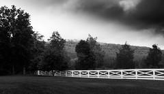 Gloom (Gene1876) Tags: fence gloom