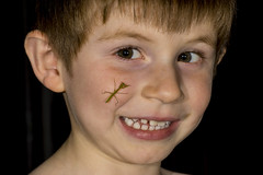 DSC03948 (advertisingwv) Tags: west macro bug mantis insect virginia sony praying josh southern wv alpha a77 mantid shackleford beckley advertisingwv