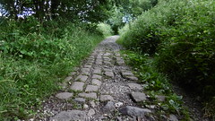 Peak Forest Tramway  July 2016  -  cobbled  path remains across track (dave_attrill) Tags: tags main peak forest tramway chapelenlefrith chapel milton chinley ferodo works bugsworth basin canal derbyshire buxworth furness vale new mills dove holes horse drawn railway line narrow gauge 1820s old cycle path footpath bridleway remains supplementary stone sleepers embankment bridge allotment factory level crossing a6 charley lane whitehough head lee locks loading dock