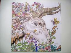 Oxen Left (Lynne M. B.) Tags: art illustration drawing coloring coloredpencils prismacolor oxen coloringbook coloringadults animorphia kerbyrosana
