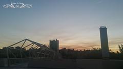 #mivalladolid #megustavalladolid #valladolid #valladolidia #valladolidenfotos  #valladoliddiaadia #valladoliddefotos #vallaigers #megustapucela #estases_de_todo #cylesvida #vallafotografos #castilla #cylesvida #pucela #igerspucela #igerscastillayleon #ige (A golpe de mirada) Tags: naturephotography vallafotografos turismospain megustapucela estaesvalladolid valladolid vallafoto mivalladolid valladolidia spain estasesdetodo igerscastillayleon valladoliddefotos valladolidenfotos pclphotos visitespaa pucela valladoliddiaadia igersvalladolid igersspain megustavalladolid vallaigers igerspucela cylesvida naturaleza castilla