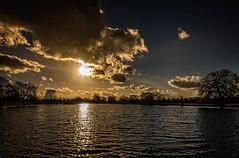 Evening over Bushy Park (mdavies149) Tags: london bushypark londonparks kingston teddington uk landscapes sunsets eveninglight michaeldavies nikon d600 clouds ngc
